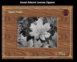 Ansel Adams leaves jigsaw