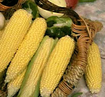 basket of corn